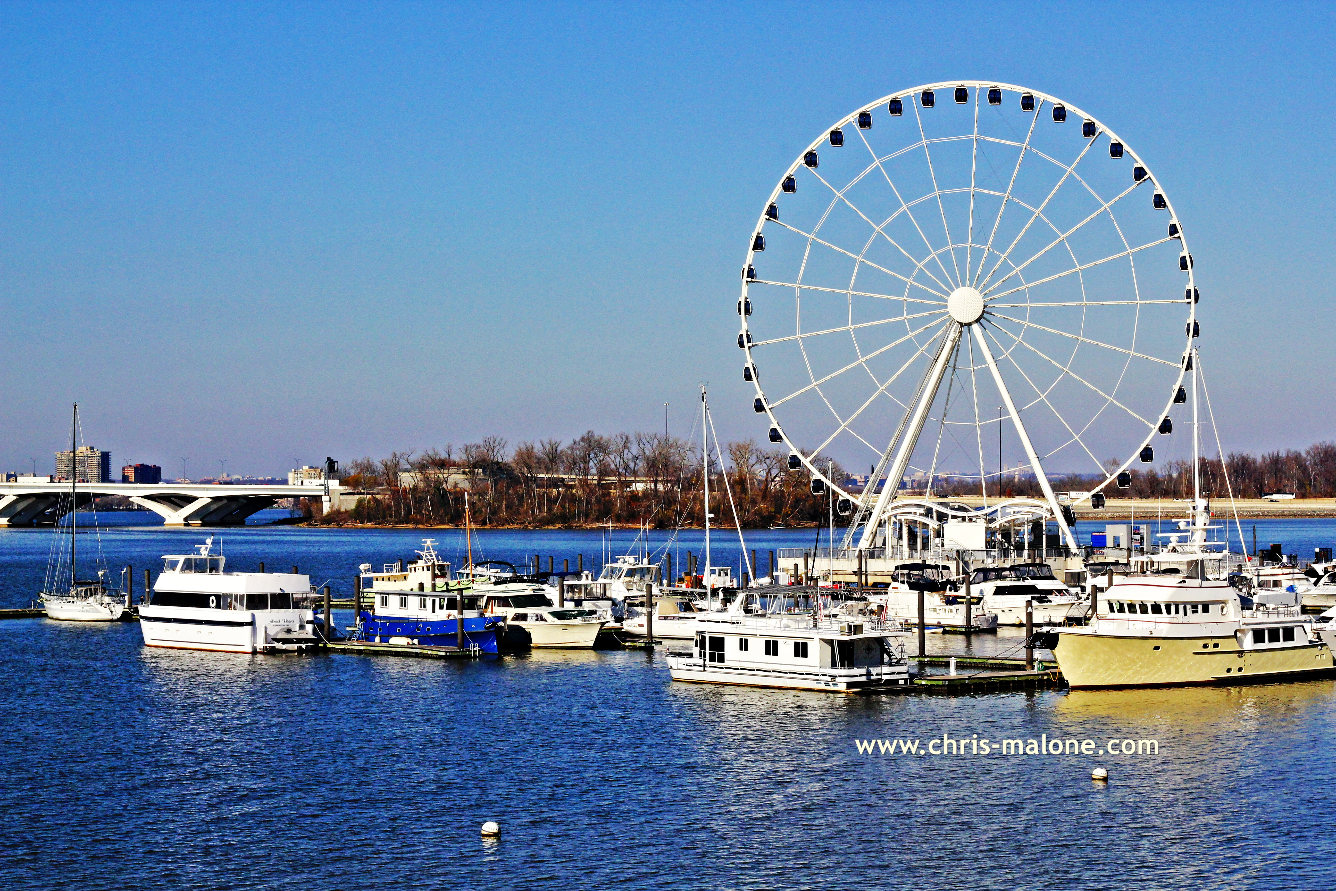 Potomac wheel tag